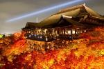 京都の紅葉ライトアップ!絶対見ておきたいおすすめ5選!
